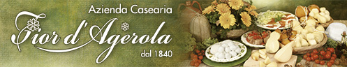 Banner-497x96-Fiord'Agerola